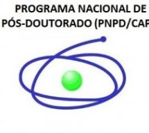 EDITAL DE SELEÇÃO Nº 04/2014 – PÓS-DOUTORADO PNPD
